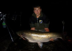 Amur 18,5kg, CF Truskawka Plus